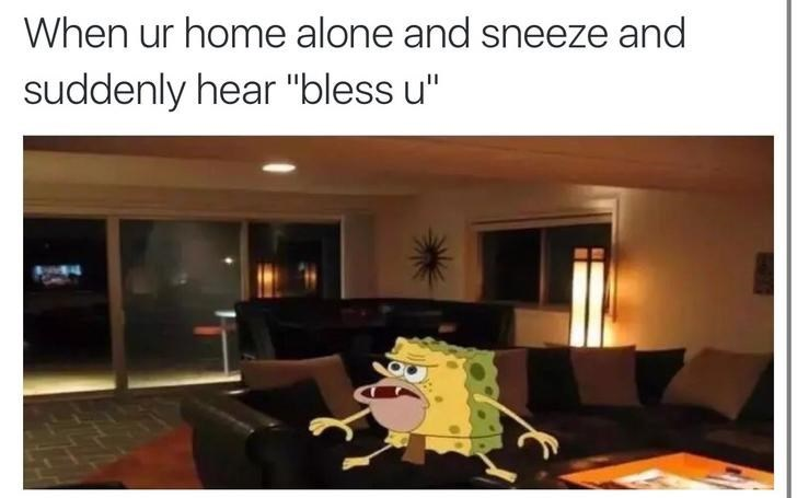 """Property - When ur home alone and sneeze and suddenly hear """"bless u"""""""