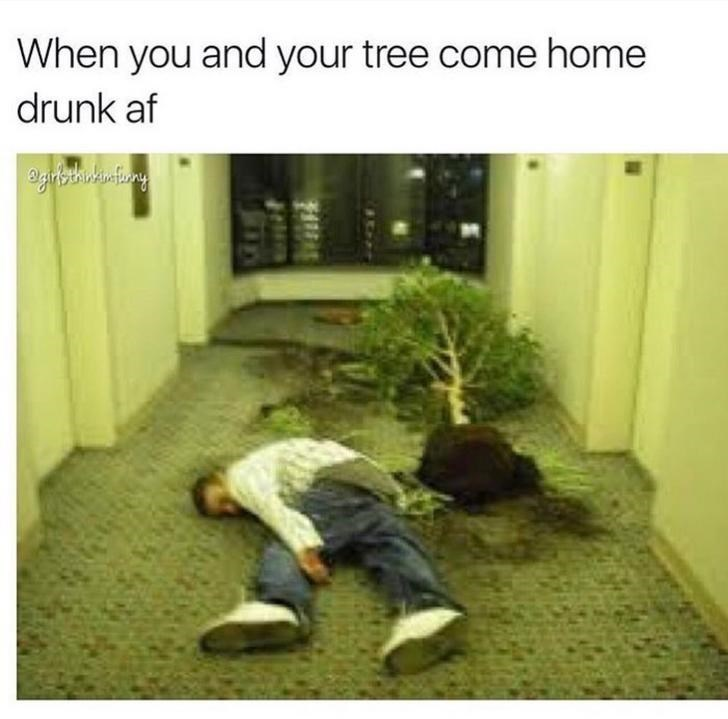 Meme about being drunk and knocking over indoor trees