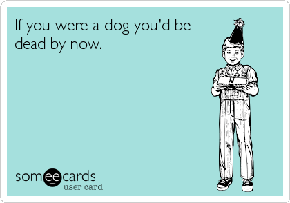 Funny eCard about how if you were a dog, you'd be dead by this age.