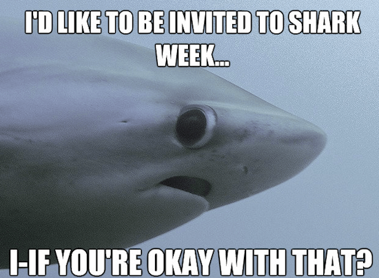 Fish - ID LIKE TO BE INVITED TO SHARK WEEK.. IF YOU'RE OKAY WITH THAT?