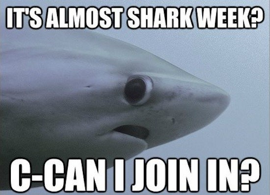 Fish - ITS ALMOST SHARK WEEK? C-CANIJOIN IN?