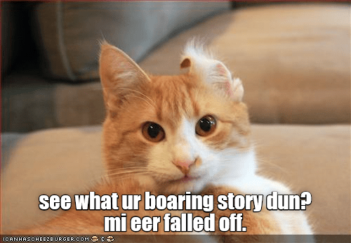 cat meme - Cat - see what ur boaring story dun? mieer falled off. ICANHASCHEEZEURGERCOM