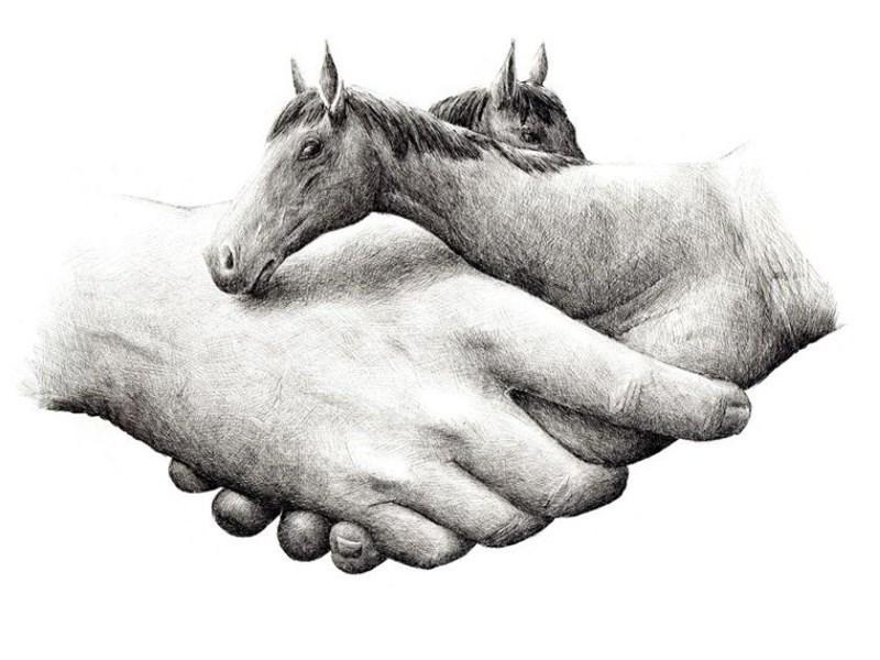 Redmer Hoekstra - Horse