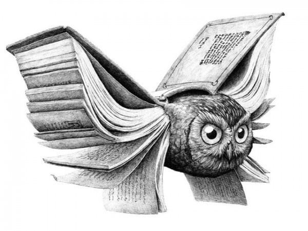 Redmer Hoekstra - Illustration