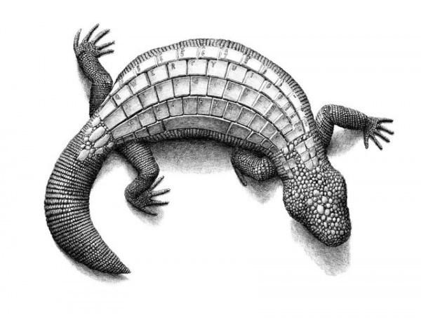 Redmer Hoekstra - Reptile