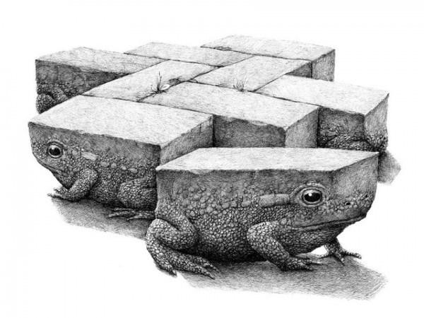 Redmer Hoekstra - Toad
