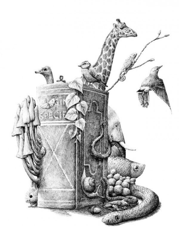 Redmer Hoekstra - Illustration - SPECIE dmerboeksra