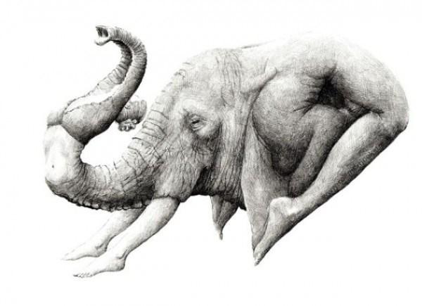 Redmer Hoekstra - Drawing