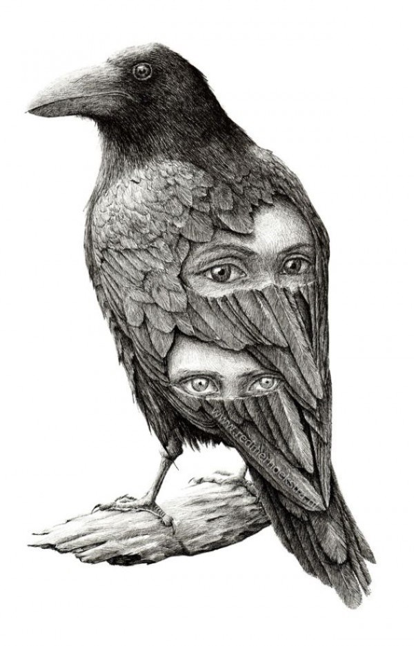 Redmer Hoekstra - Bird - ww.redtnehoekstra