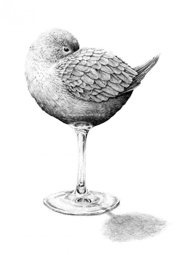 Redmer Hoekstra - Bird - ww.jednemoeksira ni
