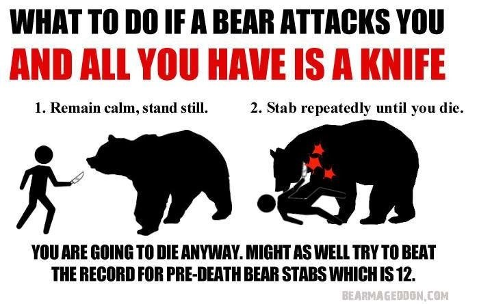 Bear - WHAT TO DO IF A BEAR ATTACKS YOU AND ALL YOU HAVE IS A KNIFE 2. Stab repeatedly until you die. 1. Remain calm, stand still. YOU ARE GOING TO DIE ANYWAY. MIGHT AS WELL TRY TO BEAT THE RECORD FOR PRE-DEATH BEAR STABS WHICH IS12 BEARMAGEDDON,COM