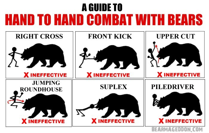 Terrestrial animal - A GUIDE TO HAND TO HAND COMBAT WITH BEARS UPPER CUT RIGHT CROSS FRONT KICK X INEFFECTIVE X INEFFECTIVE JUMPING ROUNDHOUSE X INEFFECTIVE SUPLEX PILEDRIVER X INEFFECTIVE X INEFFECTIVE X INEFFECTIVE BEARMAGEDDON,COM