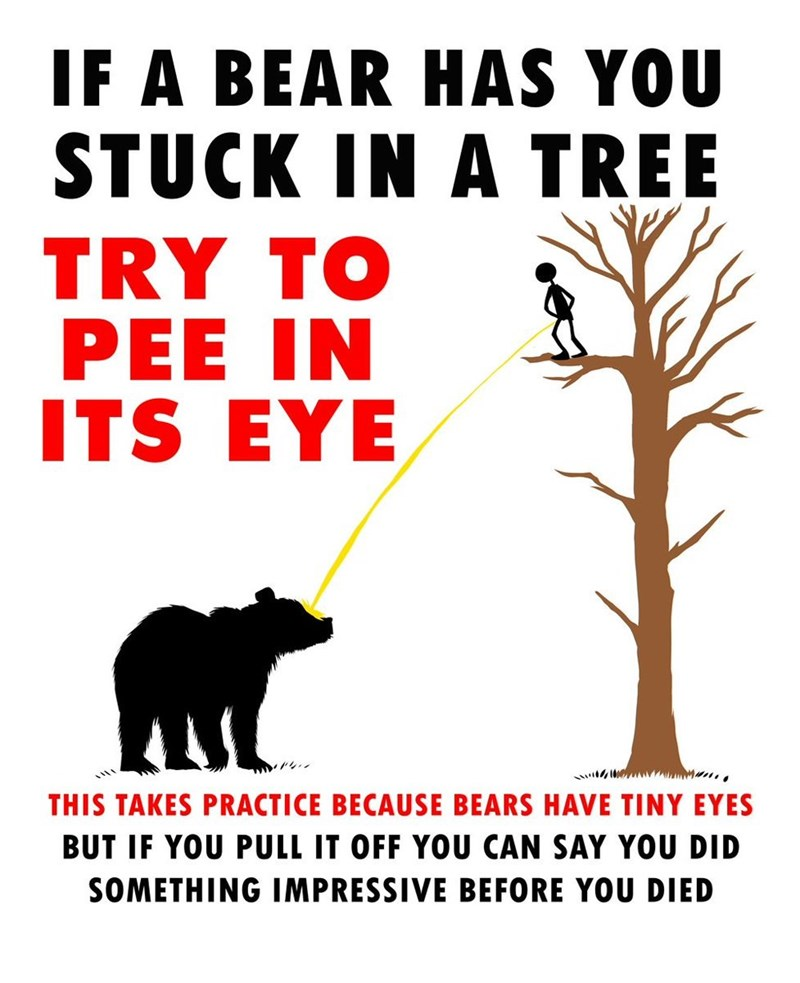 Wildlife - IF A BEAR HAS YOU STUCK IN A TREE TRY TO PEE IN ITS EYE THIS TAKES PRACTICE BECAUSE BEARS HAVE TINY EYES BUT IF YOU PULL IT OFF YOU CAN SAY YOU DID SOMETHING IMPRESSIVE BEFORE YOU DIED
