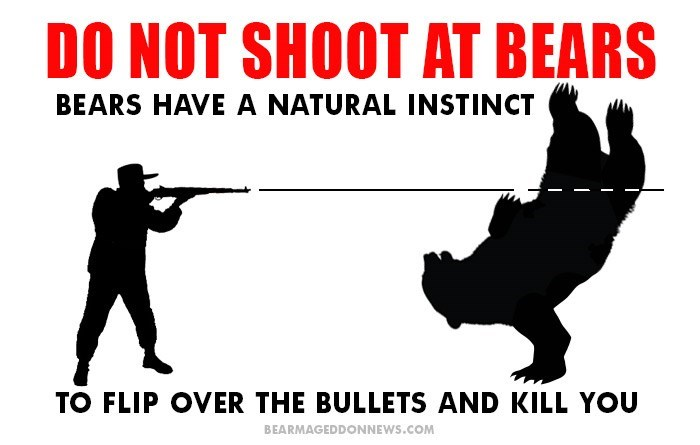 Text - DO NOT SHOOT AT BEARS BEARS HAVE A NATURAL INSTINCT TO FLIP OVER THE BULLETS AND KILL YOU BEARMAGEDDONNEWS.COM