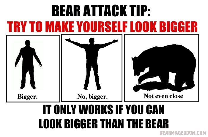 Text - BEAR ATTACK TIP: TRY TO MAKE YOURSELF LOOK BIGGER Bigger No, bigger Not even close IT ONLY WORKS IF YOU CAN LOOK BIGGER THAN THE BEAR BEARMAGEDDON,COM