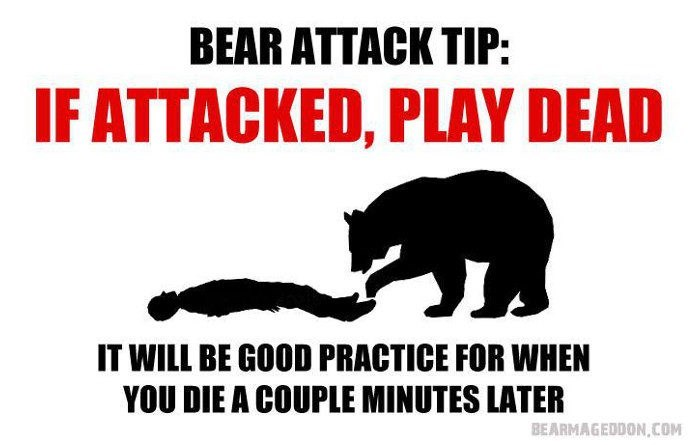 Bear - BEAR ATTACK TIP: IF ATTACKED, PLAY DEAD IT WILL BE GOOD PRACTICE FOR WHEN YOU DIE A COUPLE MINUTES LATER BEARMAGEDDON,cOM