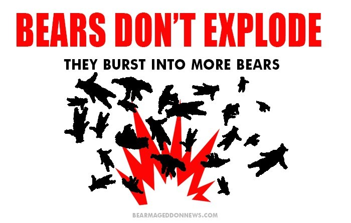 Text - BEARS DON'T EXPLODE THEY BURST INTO MORE BEARS BEARMAGEDDONNEWS.COM