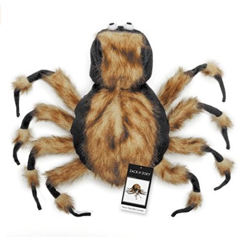 Spider - ZACK 20EY