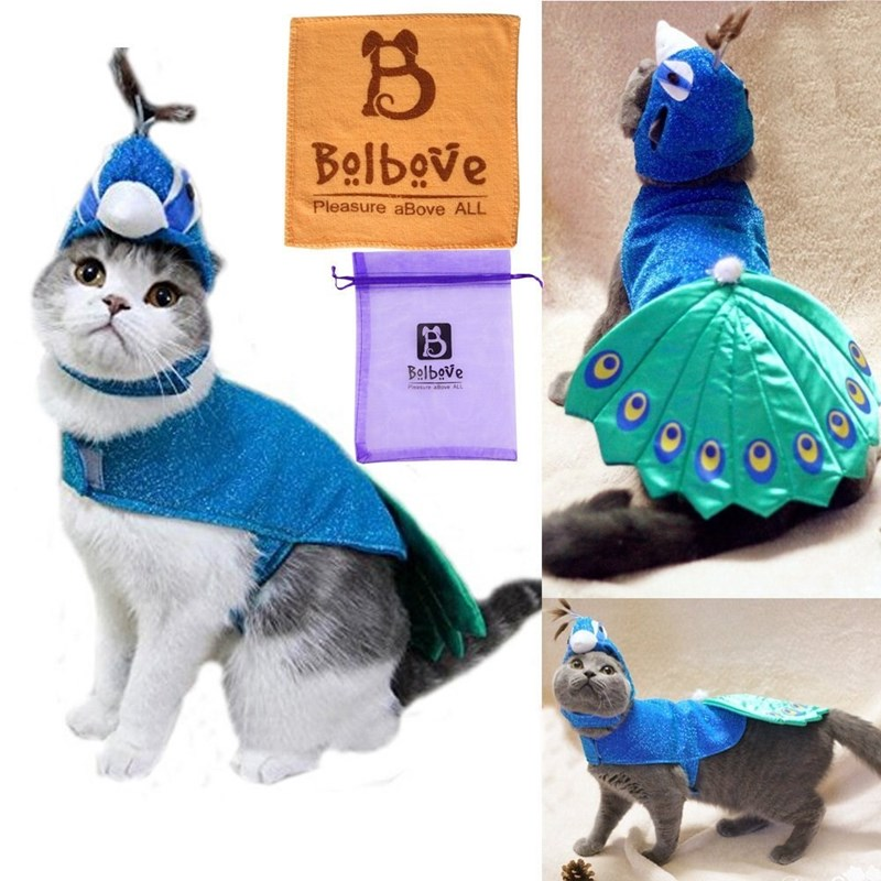 Dog clothes - Bolbeve Pleasure aBove ALL Bolbove Peasute aBmvE ALL
