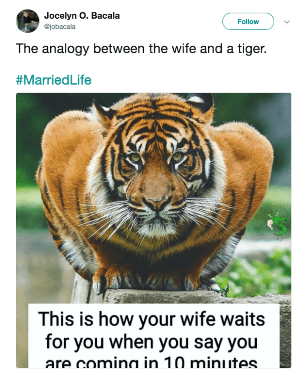 Tiger - Jocelyn O. Bacala @jobacala Follow The analogy between the wife and a tiger. #MarriedLife This is how your wife waits for you when you say you are comina in 10 minutes.