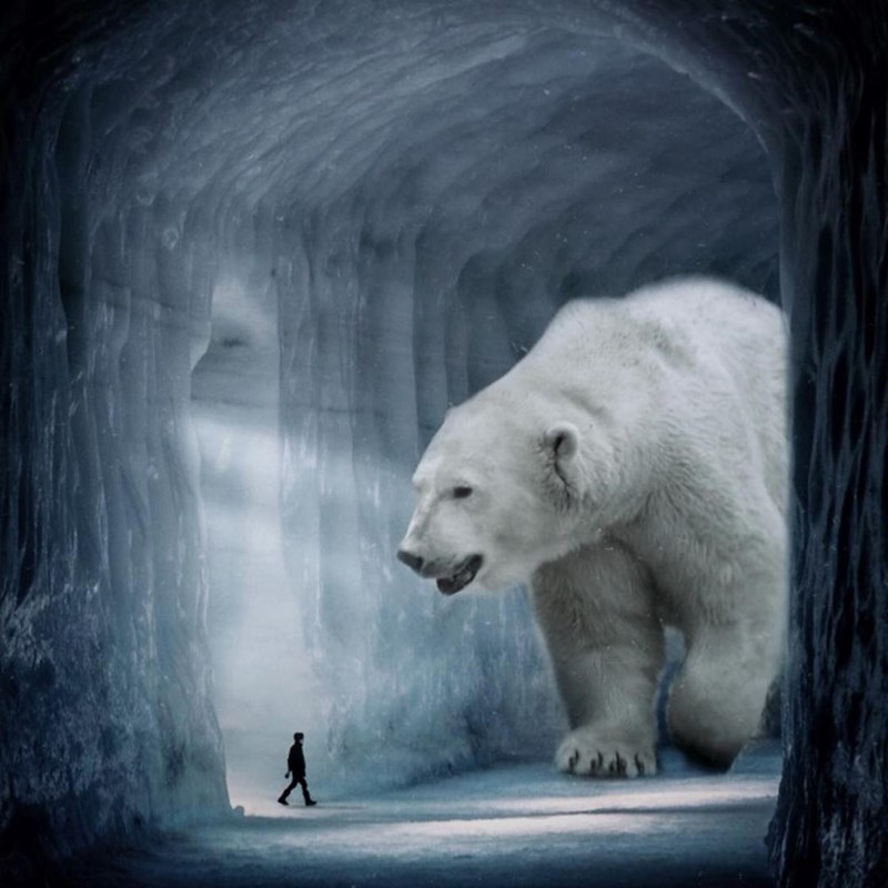 giant animal photoshops - Polar bear