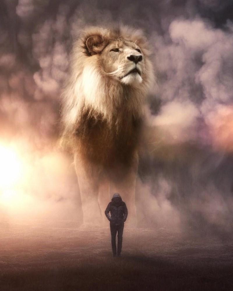 giant animal photoshops - Lion