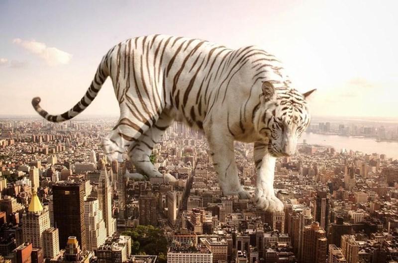 giant animal photoshops - Vertebrate