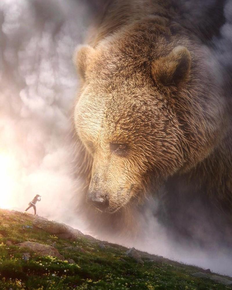 giant animal photoshops - Mammal