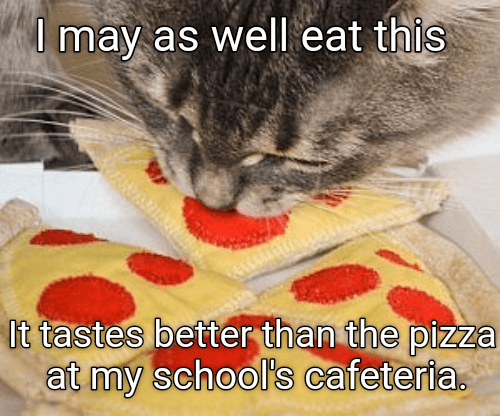 Cat - Umay as well eat this It tastes better than the pizza at my school's cafeteria.