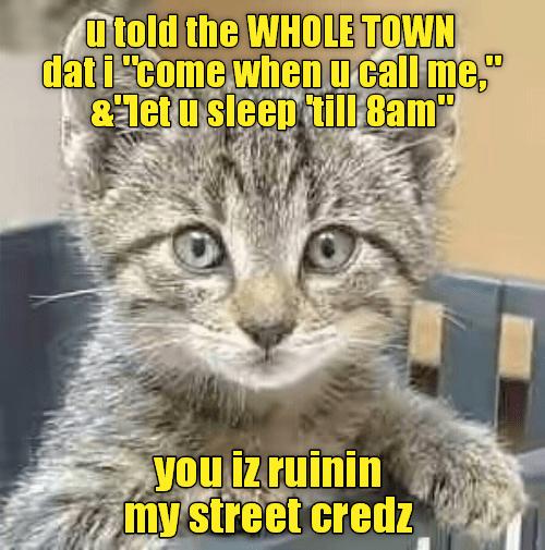 Cat - utold the WHOLE TOWN dat icome when u call me &1etu sleep till 8am you iz ruinin my street credz