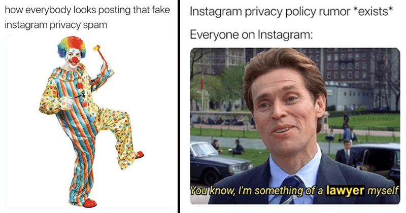 Memes and tweets about people falling for Instagram privacy policy scam.