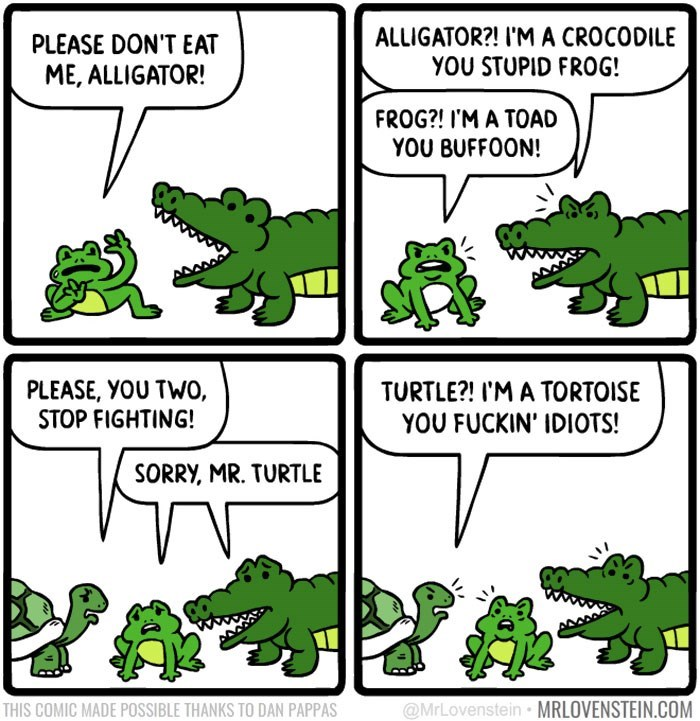 Green - ALLIGATOR?! I'MA CROCODILE YOU STUPID FROG! PLEASE DON'T EAT ME, ALLIGATOR! FROG?! I'M A TOAD YOU BUFFOON! PLEASE, YOU TWO, STOP FIGHTING! TURTLE?! I'M A TORTOISE YOU FUCKIN' IDIOTS! SORRY, MR. TURTLE @MrLovenstein MRLOVENSTEIN.COM THIS COMIC MADE POSSIBLE THANKS TO DAN PAPPAS