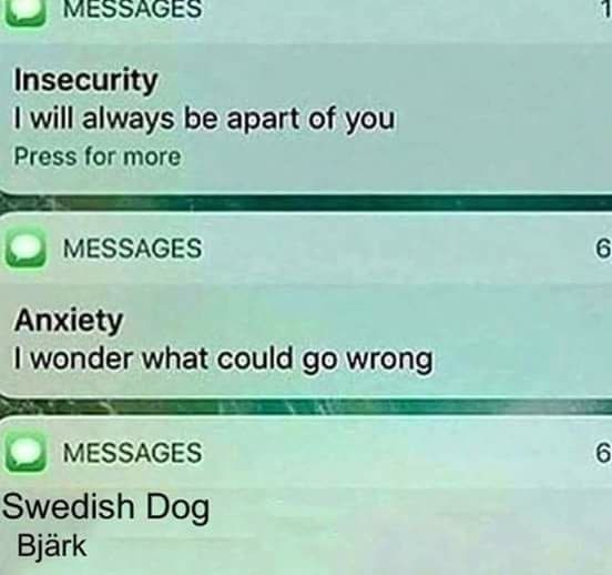 Funny meme about texts from anxiety, depression and a swedish dog saying bjark.