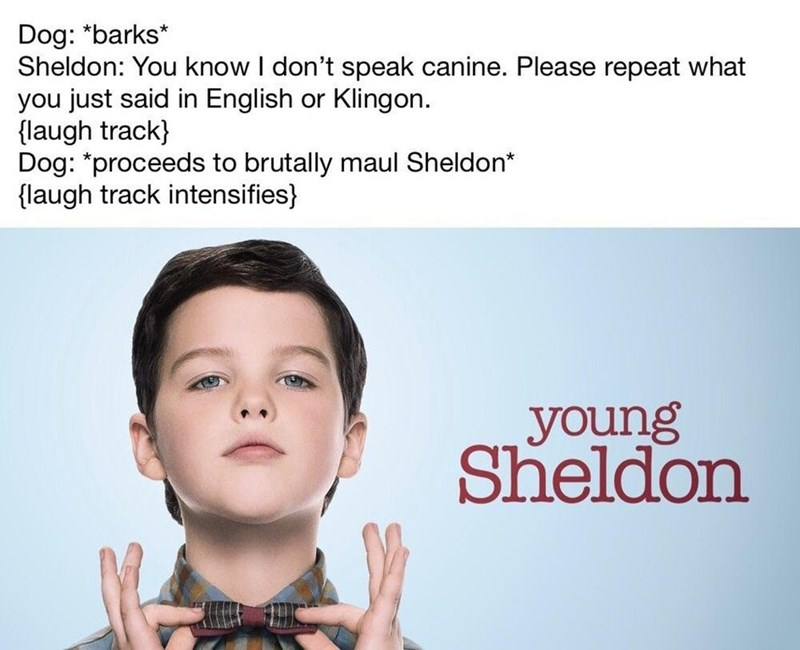 Face - Dog: *barks* Sheldon: You know I don't speak canine. Please repeat what you just said in English or Klingon {laugh track) Dog: *proceeds to brutally maul Sheldon* laugh track intensifies young Sheldon