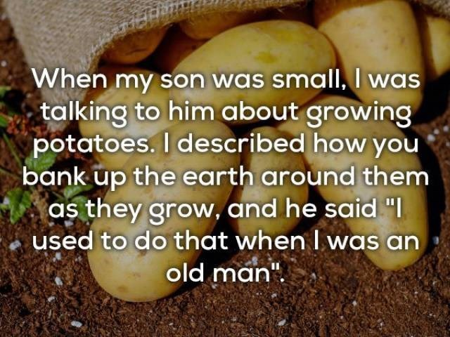 "Adaptation - When my son was small, I was talking to him about growing potatoes. I described how you bank up the earth around them as they grow, and he said ""I used to do that when I was an old man"""