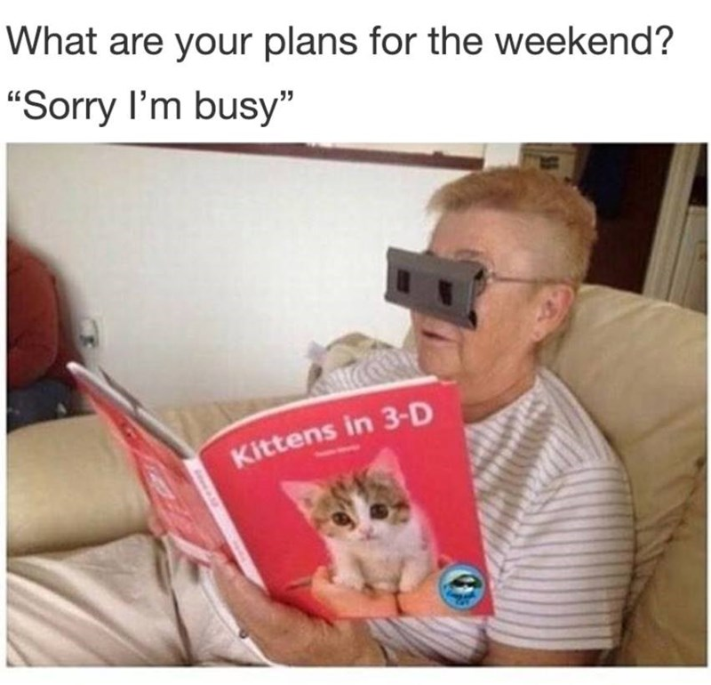 Funny meme about saying you have plans and then looking at pictures of kittens in 3-d.