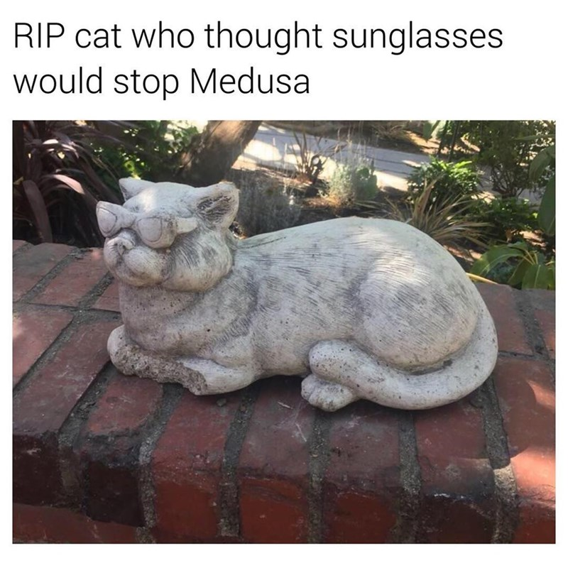 Funny meme about cat who turned to stone.