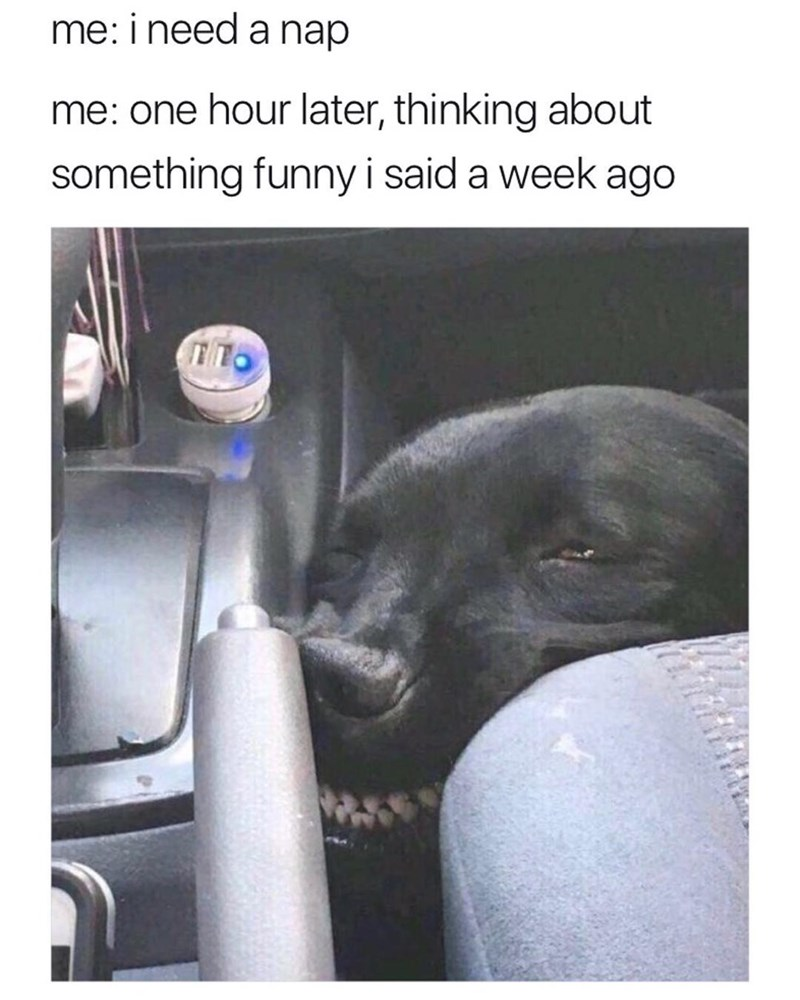 dog meme about being tired and laughing at random things