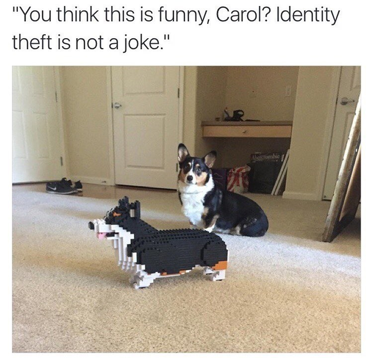 dog meme about dog being unhappy about life size Lego model of itself