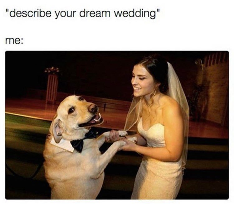 dog meme about relationship goals with pic of woman getting married to a dog