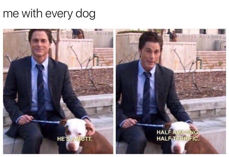 dog meme with scene from Parks and Rec of Chris describing a mutt lovingly