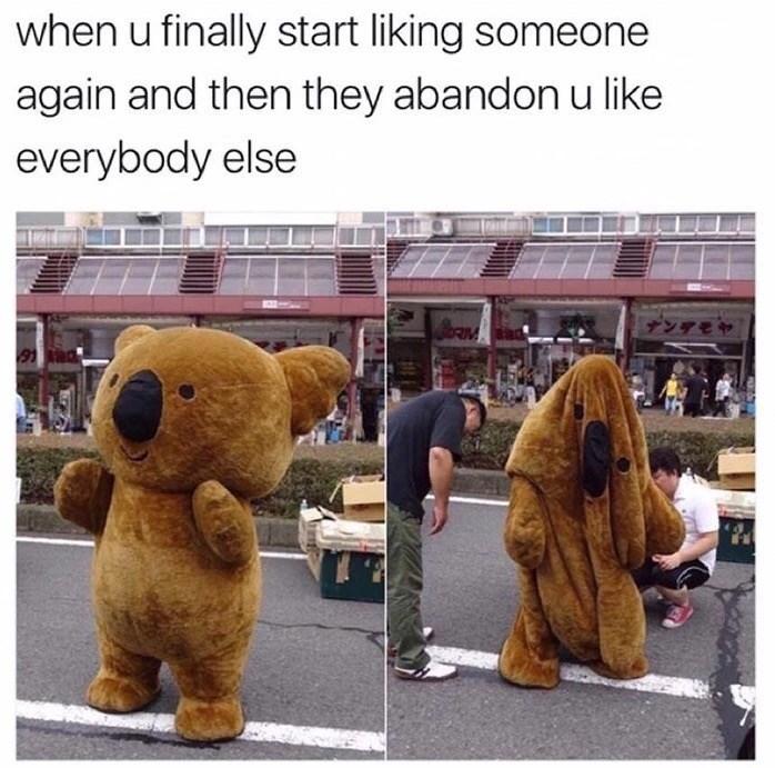 Deflated Koala bear mascot meme