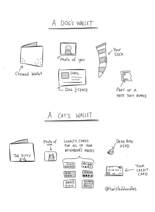Text - A DOG'S WALLET Your Sock Photo of you Chewed Wallet DOG Doc LICENCE PART OF A NOTE THEY RIPPED A CAT'S WALLET DEAD BIRD HEAD LoyALTY CARDS FOR ALL OF YouR NEIGHBOURS HOUSES Photo of HIM THE KITTY Mre Duf JoHN O000 YoUR CREDIT CARD COLM DO o HANNAH MARY'S O000 DOO @twisteddoodles