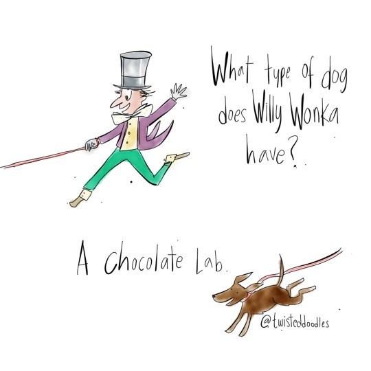 Text - Wheri tue of deg des Wly Wonka have? A chocolate Lob @twisteddoodles