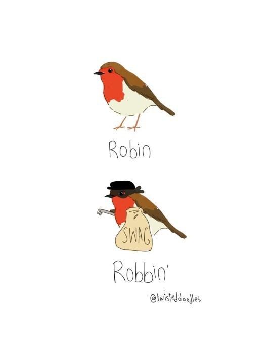 Bird - Robin SWAC Robin @thisteldoles