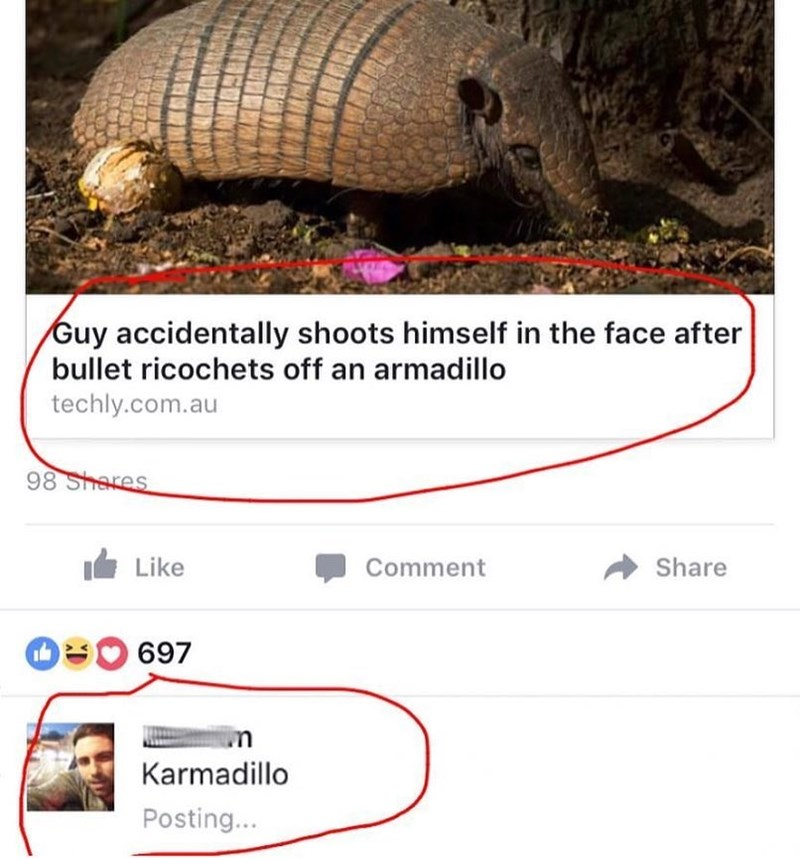 "Funny meme about man shooting self in the face after the bullet ricochets off of an armadillo, called ""karmadillo."""