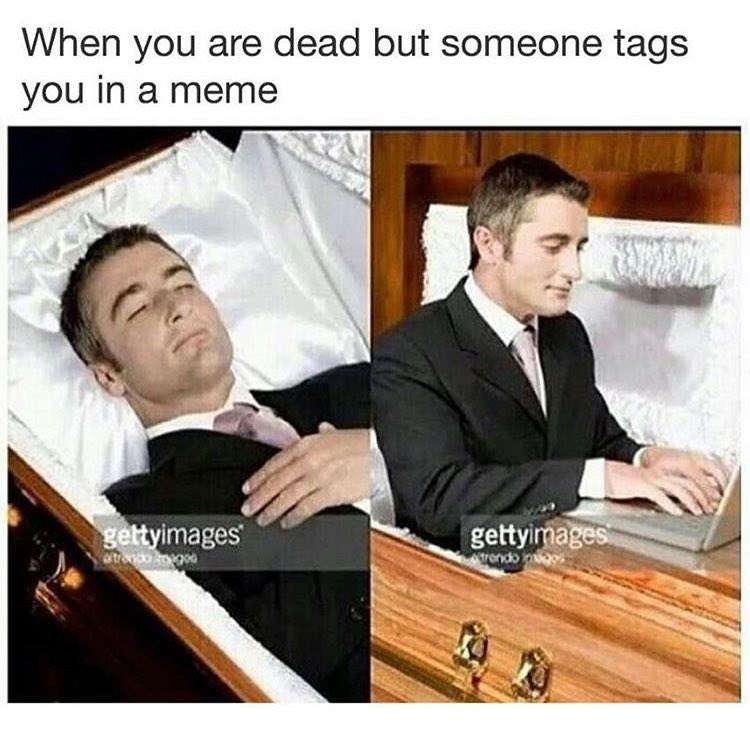 Funny meme about being dead but coming back to life when someone tags you in a meme.