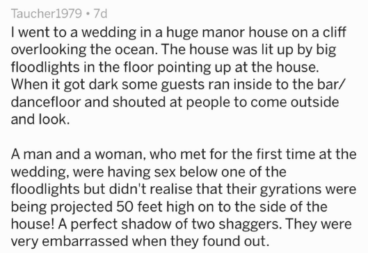 Text I went to a wedding in a huge manor house on a cliff overlooking the ocean. The house was lit up by big floodlights in the floor pointing up at the house. When it got dark some guests ran inside to the bar/ dancefloor and shouted at people to come outside and look A man and a woman, who met for the first time at the wedding, were having sex below one of the floodlights but didn't realise that their gyrations were being projected 50 feet high on to the side of the house! A p
