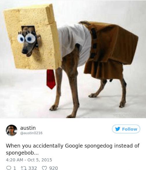 Camel - austin Follow @austin0216 When you accidentally Google spongedog instead of spongebob... 4:20 AM - Oct 5, 2015 1 332 920