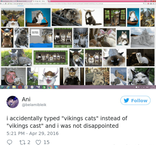 """Photography - T O w 20 96 10 20 300 e Ani Follow @belamibleik i accidentally typed """"vikings cats"""" instead of """"vikings cast"""" and i was not disappointed 5:21 PM - Apr 29, 2016 t2 15"""
